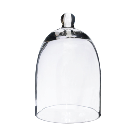 mini-glass-dome-