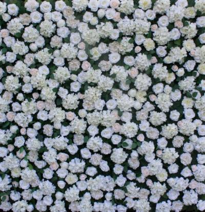 white-flower-wall